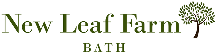 New Leaf Farm self catering holiday cottages in Bathampton, Bath, Avon